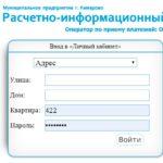 Как платить коммуналку через МП РИЦ в Кемерово. Есть ли экономия?