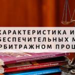Общая характеристика института обеспечительных мер в арбитражном процессе